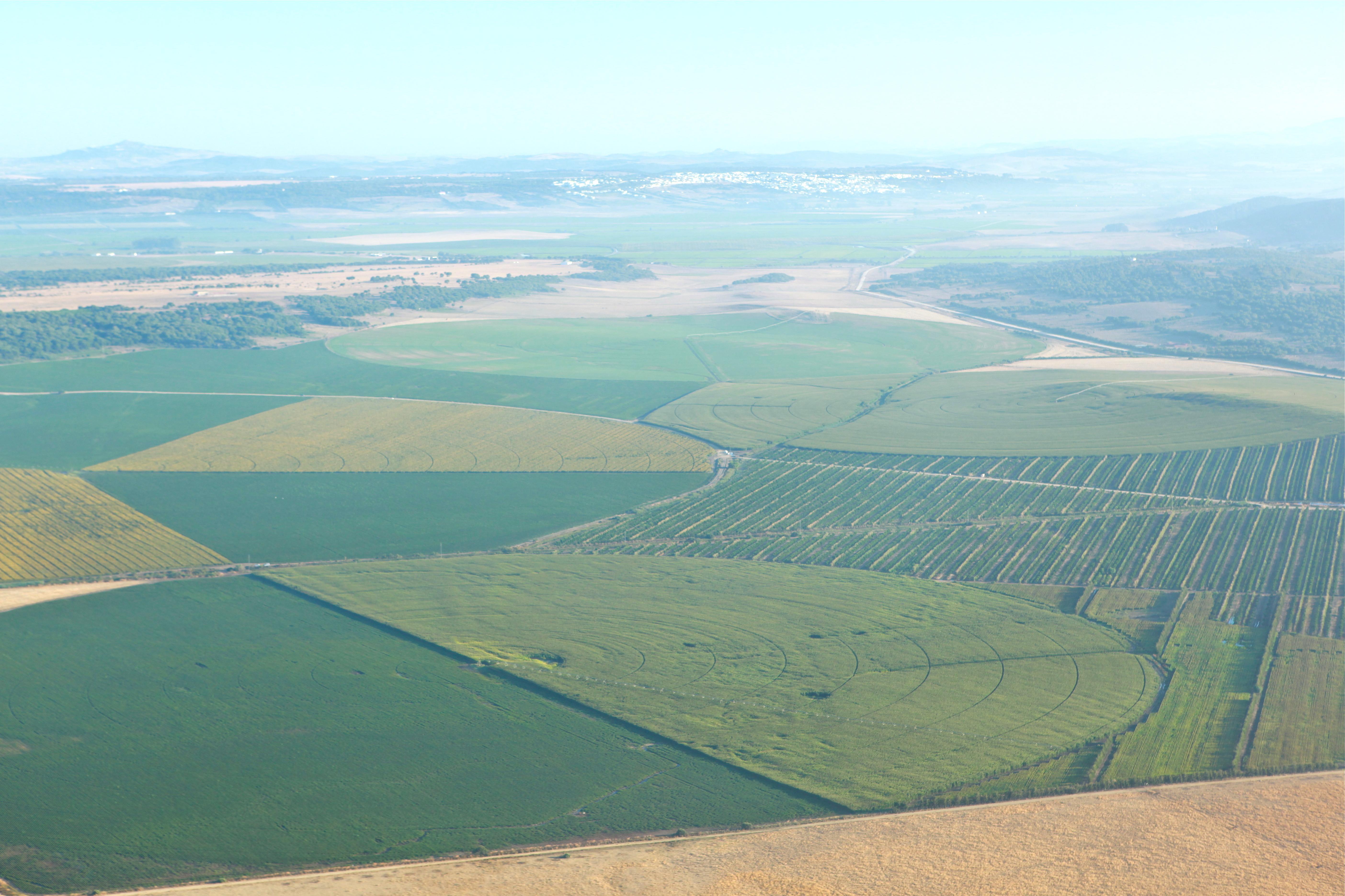 Las Lomas Farm